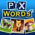 PixWords Android