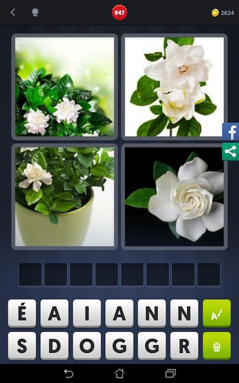 4 images 1 mot bouquet de fleurs
